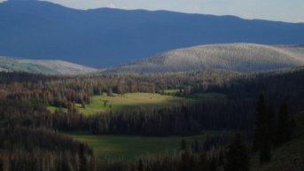 CDT valley
